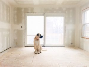 english-mastiff-dog-sitting-on-bare-floor-in-bare-room-with-fresh-drywall-and-bright-light_t20_EO3w1Y-300x225 english-mastiff-dog-sitting-on-bare-floor-in-bare-room-with-fresh-drywall-and-bright-light_t20_EO3w1Y